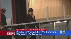 BREAKING: Trump Likely To Commute Blagojevich's Sentence [Video]