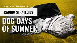 Why Investors May Be Seeing the End of the Dog Days of Summer [Video]