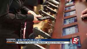 Will Red Flag Laws Prevent Mass Shootings? p1 [Video]
