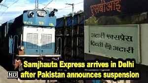 Samjhauta Express arrives in Delhi after Pakistan announces suspension [Video]