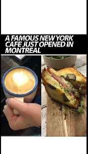 A Famous New York City Cafe And Bakery Just Opened In Montreal [Video]