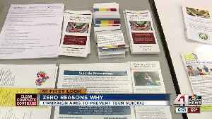 'Zero Reasons Why' suicide prevention campaign hopes to expand in new school year [Video]