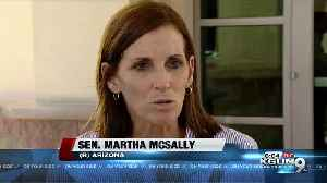 Sen. McSally talks immigration, gun control reform on Yuma border tour [Video]