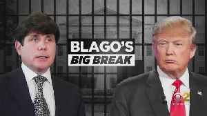 Trump Backing Off On Blagojevich Commutation? [Video]