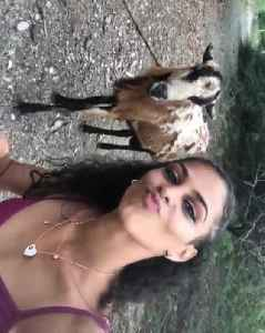 Goat Headbutts Girl Trying to Take Selfie With It [Video]