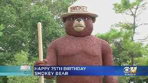 News video: Smokey Bear Preventing Forest Fires As He Turns 75