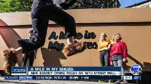 New exhibit lets you walk a mile in someone else's shoes [Video]