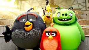 News video: The Angry Birds Movie 2 -