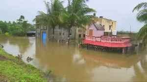More than 100 are dead as heavy monsoon rains batter India [Video]