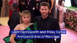 Liam Hemsworth and Miley Cyrus Announce End of Marriage [Video]