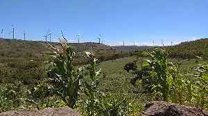 The view of the Sidrap Wind Farm [Video]