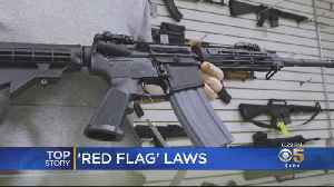 News video: Politicians On Both Sides Seem To Agree On 'Red Flag Laws' For Gun Control