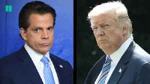 Anthony Scaramucci Compares Trump To Chernobyl Nuclear Disaster [Video]