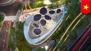 News video: Sustainable park with 'solar trees' planned for Ho Chi Minh City