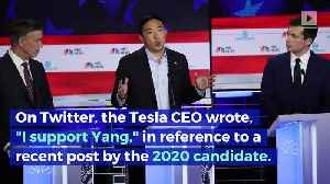 Elon Musk Is Supporting Andrew Yang for President [Video]