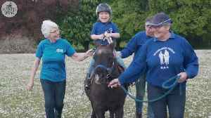 How therapy horses change the lives of riders, carers and volunteers [Video]