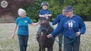 Taking the reins: How therapy horses change the lives of riders, carers and volunteers alike [Video]