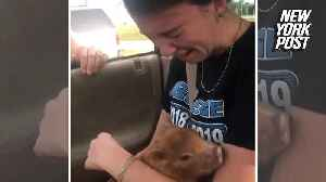 'Pig' surprise sends teen into tears [Video]