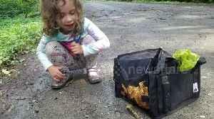 Sweet 5-year-old tries to feed banana slug mushrooms and huckleberries [Video]