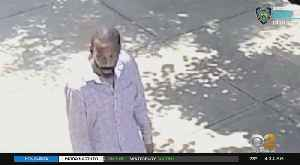 Elderly Man Attacked In Brooklyn [Video]