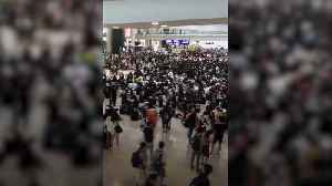 All remaining flights cancelled for a second day amid Hong Kong protests [Video]