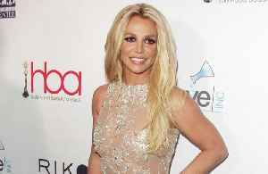 Britney Spears spent 400k on personal expenses [Video]