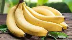 Deadly Fungus Drives Bananas Closer to Extinction [Video]