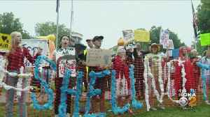 Protesters At Shell Cracker Plant [Video]