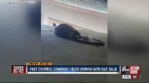 Pest control company helps Pinellas County woman with rat issue [Video]