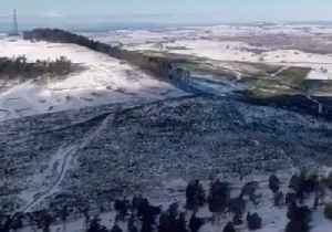 New South Wales Fields Blanketed in Snow as Cold Snap Continues [Video]