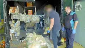 Australian police seize $600 million worth of drugs [Video]