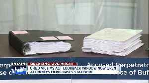 Survivors watch as their Child Victims Act claims are filed in NY courts [Video]