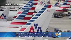 News video: Florida Woman Sues American Airlines Over Comfort Dog Dispute