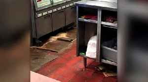 Video of 'Sewage' at Michigan McDonald's is Actually Grease Spill, Officials Say [Video]