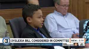 News video: Families say dyslexia bill would help; state reading group disputes 'reading wars' discussion