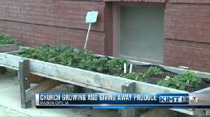 Church Growing and Giving Away Produce [Video]