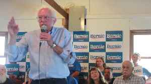 Leftists Worry Sanders And Warren Will Split Their Vote [Video]