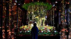 Brussels blooming as city hosts international flower festival [Video]