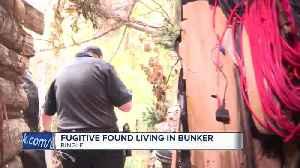 Wisconsin fugitive survives 3 years in makeshift bunker [Video]