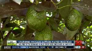 Ag Report: Avocado crop winding down, production down for grain crops [Video]