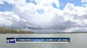 Health advisory issued for Lake Lowell [Video]