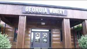 Hometown Tours Georgia Winery [Video]