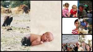 Uğur Gallenkuş: Artist juxtaposes two different worlds in one photo collage [Video]