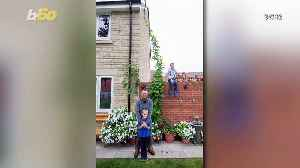 Behemoth Beanstalk! 5-Year-Old Boy Looks to Set World Record with His 15-Foot Beanstalk! [Video]