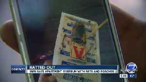 Contact7 investigates a roach and rodent 'infestation' at Denver apartment complex [Video]