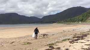 INTELLIGENT WEIMARANER CRACKS DOWN ON PLASTIC POLLUTION ACROSS UK BEACHES IN BID TO HELP OWNERS [Video]