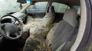 SKIN-CRAWLING FOOTAGE SHOWS GIANT NEST CONTAINING MORE THAN ONE MILLION WASPS TAKING ROOT IN ABANDONED CAR [Video]