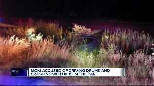Allegedly drunk Oxford mom crashes while fleeing police, injuring two daughters [Video]