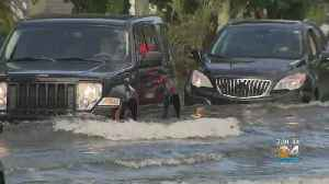 Sudden Downpour Causes Flash Flooding In Parts Of South Miami-Dade [Video]