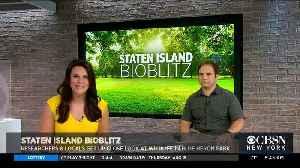 See Wildlife Up Close In Staten Island Bioblitz [Video]